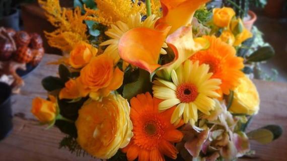 フラワーギフト定期便 4646農園は富山市粟島のフラワーショップお花屋さんです